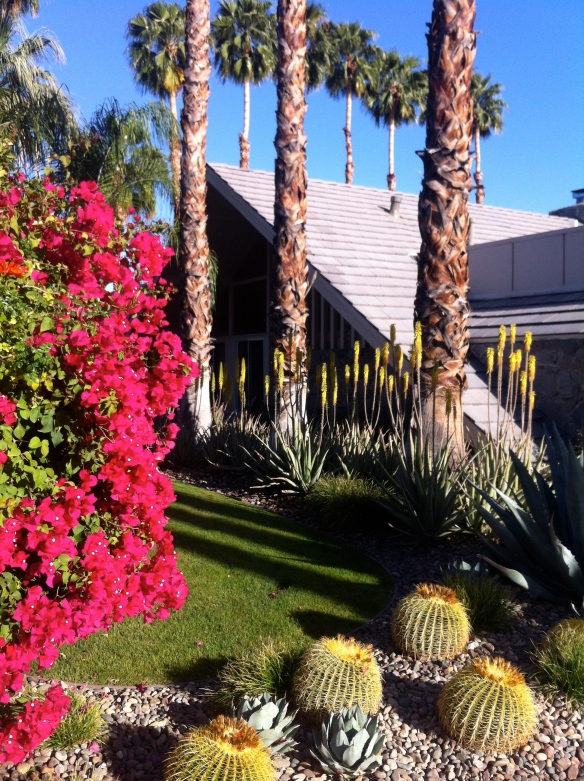 Mid-Century Modern Tour in Palm Springs